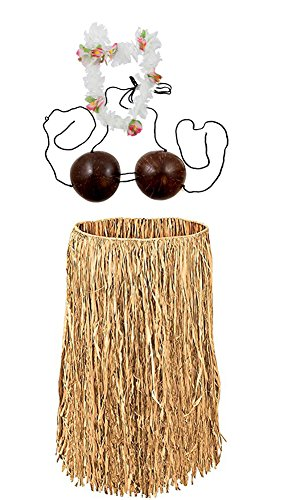 Jacobson Hat Company Costume Set Hawaiian Grass Skirt With Coconut Bra And Flower Lei
