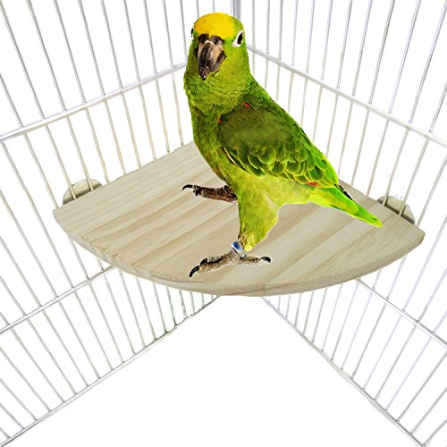 Bwogue Wooden Parrot Bird Platform Perch Stand for Budgie Conure Parrot Cages Toy by Bwogue