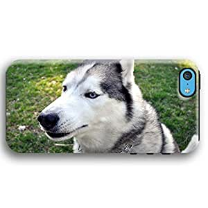 Questioning Husky Dog Puppy iPhone 5C Armor Phone Case