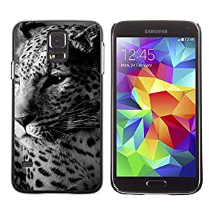 TECHCASE**Cubierta de la caja de protección la piel dura para el ** Samsung Galaxy S5 SM-G900 ** Leopard Cute Furry Beast Animal Spots