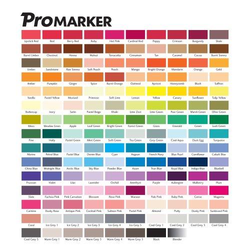 """Résultat de recherche d'images pour """"le promarker"""""""