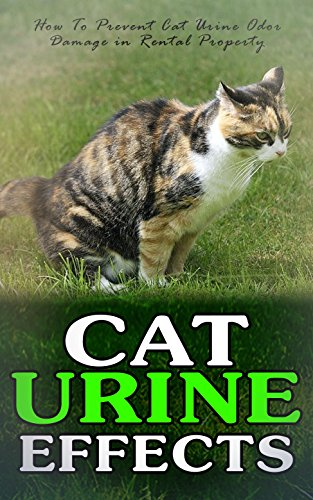 Cat Urine Effects How To Prevent Cat Urine Odor Damage In Rental Property
