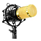 Kyпить Condenser Microphone, M.Way Professional Studio Microphone with Shock Mount Holder+Foam Cap Compatible with PC, Desktop, TV, Recording Devices for Youtube, Podcasting, Game Broadcast, Singing на Amazon.com