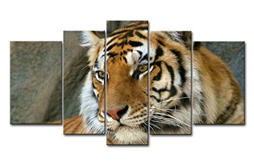 So Crazy Art - Canvas Print Wall Art Painting For Home Decor,Bengal Tiger 5 Pieces Panel Paintings Modern Giclee Stretched And Framed Artwork Oil The Picture For Living Room Decoration,Animal Pictures Photo Prints On Canvas (Bengal Tiger Framed)