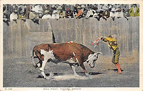Bull Fight Tarjeta Postal Bullfighting Tijuana, Mexico 1922 ...