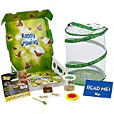 Insect Lore Deluxe Butterfly Garden with Live Cup of Caterpillars & Feeding Habitat Kit