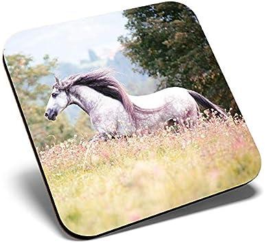 Posavasos cuadrado con diseño de caballo español puro andaluz | Posavasos de calidad brillante | Protección de mesa para cualquier tipo de mesa #12473
