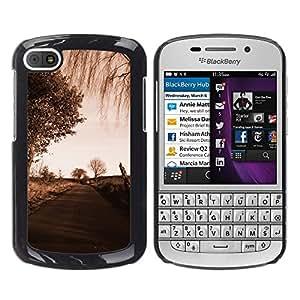 LECELL--Funda protectora / Cubierta / Piel For BlackBerry Q10 -- Camino Sad --
