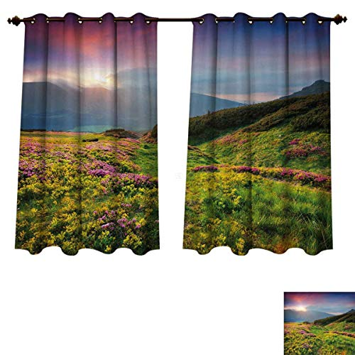 RuppertTextile Nature Blackout Thermal Curtain Panel Summer Season Scene with Fresh Flowers Green Foliage Mountain Landscape Ukraine Patterned Drape for Glass Door Pink Green Blue W72 x L84 ()