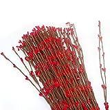Pursuestar Artificial Bendable Primitive Folk Pip Berry Garland Rattan Hair Pieces Flower Decor DIY Crafting for Bride Bridesmaid Women Teens Girls 40cm Red Set of 100