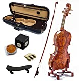 SKY Mastero Sound 4/4 Full Size New VN431 Bird Eye Maple Violin Kit w Case Bow Rosin Mute