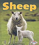 Sheep, Robin Nelson, 0761341013