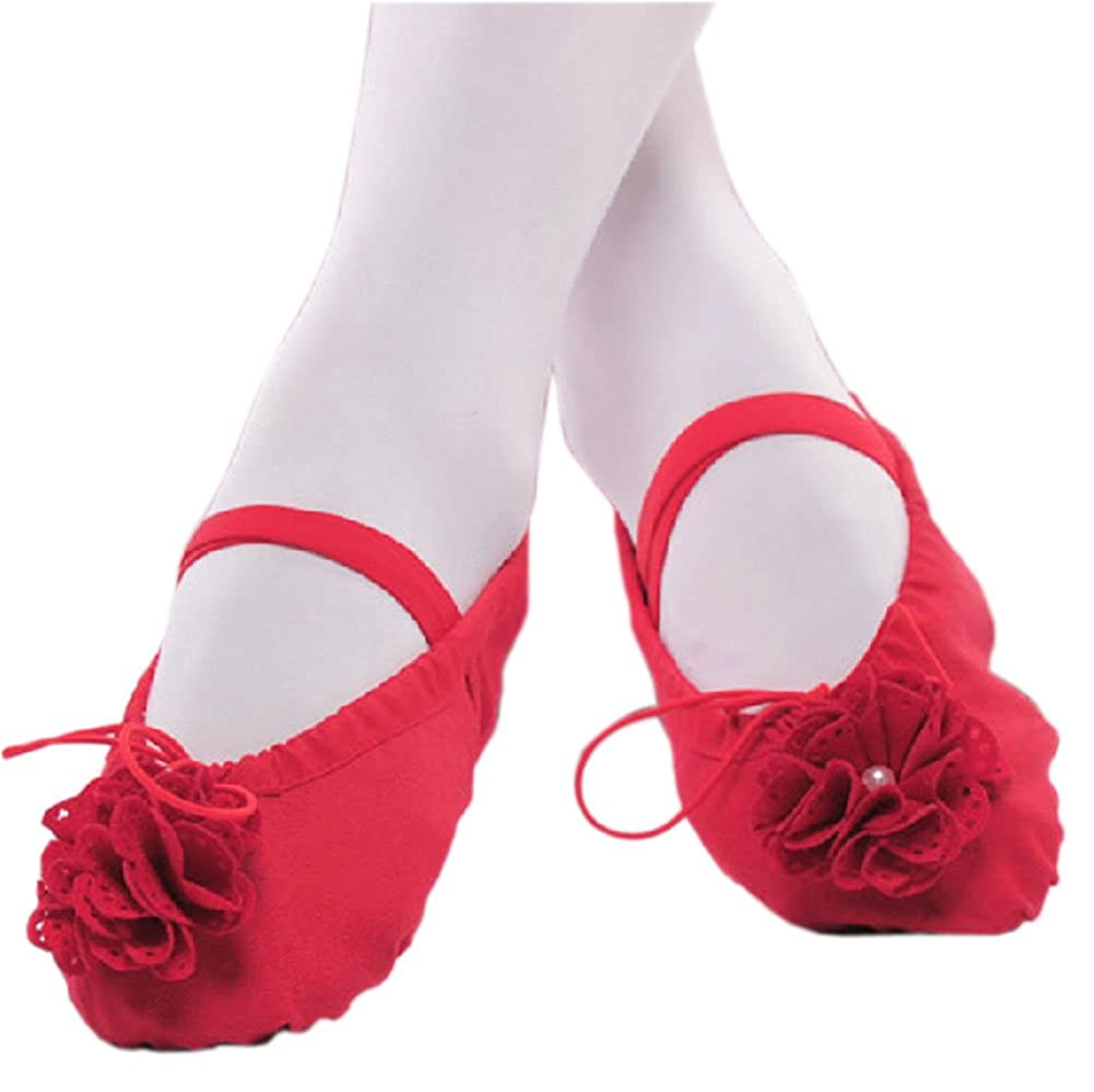 19CM Length Dance Class Ballet Shoes//Canva Dance Shoes for Pretty Girl Red