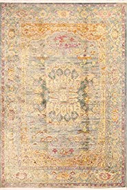 Vintage Style Traditional Floral Distressed Heat-Set Oriental Area Rugs Turkish Room Size Carpet 8 x 10 (8'