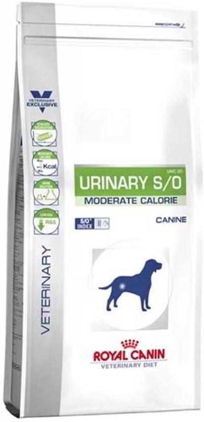 ROYAL CANIN Alimento para Perros Urinary MC - 12 kg: Amazon.es ...