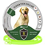 Solacium Flea and Tick Prevention for Dogs, Natural Hypoallergenic Flea and Tick Collar, 8 Months Protection