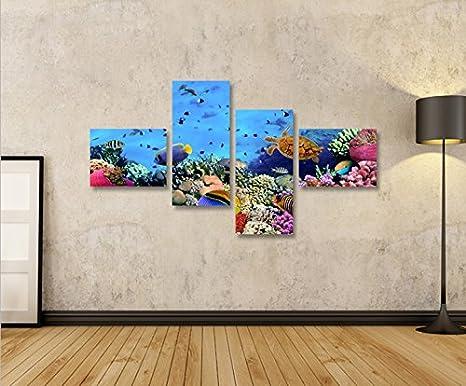 Design & Stil Ab 2000 Doktorfische 3 Bilder Bild Aquarium auf Leinwand Wandbild Poster