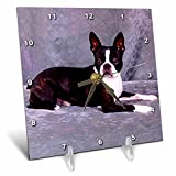 Dogs Boston Terrier - Boston Terrier - 6x6 Desk Clock (dc_268_1)