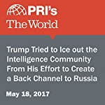Trump Tried to Ice Out the Intelligence Community From His Effort to Create a Back Channel to Russia | Joyce Hackel