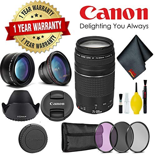 Canon EF 75-300 Zoom Lens - International Version (No Warranty) (Best Zoom Lens For Canon 1000d)