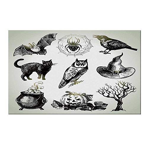 YOLIYANA Vintage Halloween Durable Door Mat,Halloween Related Pictures Drawn by Hand Raven Owl Spider Black Cat Decorative for Home Office,17.7
