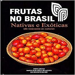 Plantas Medicinais No Brasil Nativas E Exoticas Pdf