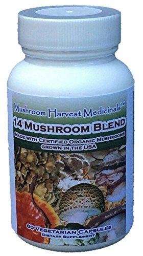 - 14 Mushroom Blend by Mushroom Harvest * CERTIFIED ORGANIC * FULL SPECTRUM * 60 Capsules