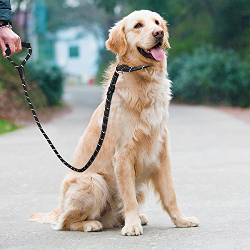 UEETEK-Dog-Slip-Collar-Choke-Leash-P-Leash-Reflective-Durable-Training-Rope-Sponge-Handle-Control-for-Running-Walking-Hiking
