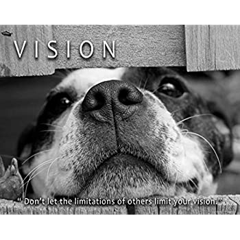 Religious Poster Art Print Dogs are sent from Heaven Veterinarian Office RELG36
