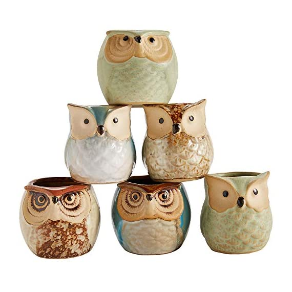 Sun-E 2.5 Inch Owl Pot Ceramic Flowing Glaze Base Serial Set Succulent Plant Pot Cactus Plant Pot Flower Pot Container Planter Bonsai Pots with A Hole Perfect Gift Idea 6 in Set 3 New SUN-E collections!OWL OWL OWL!!!Ideal for adding a dash of refreshingly modern design to your home,Great Gift - this ceramic pot can serve a variety of purposes. Perfect gift for family and friends who love succulent plants with a green thumb or keep it in your own home for a touch of clean, modern style in your living space. Material:Ceramic(Made of top-quality clay and baked in high temperatures);Package content:6pcs*Pot. Approximate Size: 2.2 x 2.2 x 2.4 inch (L x W x H).
