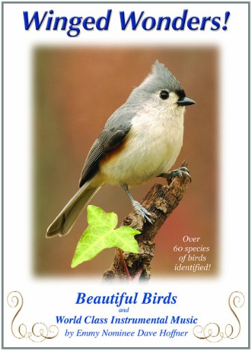 Winged Wonders! Beautiful Birds and World Class Instrumental Music