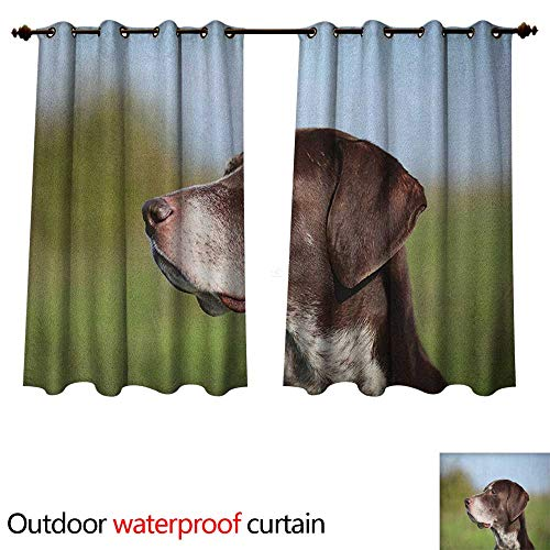 Anshesix Hunting Outdoor Ultraviolet Protective Curtains German Short Haired Pointer in Wilderness Portrait Photograph Kurzhaar Pet Dog W108 x L72(274cm x 183cm)