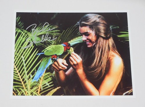 The Blue Lagoon Brooke Shields Hand Signed Autographed 8x10 Glossy Photo - Whitney Mtv