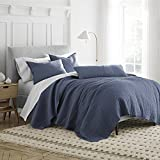 Under the Canopy Organic Quilt, Full/Queen, Blue
