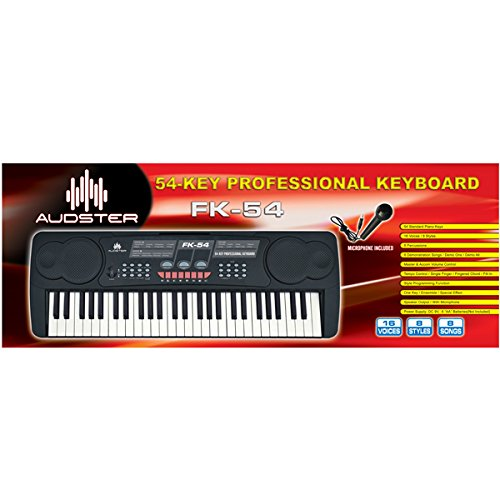 [해외]Audster FK-54, 54-Key 마이크로폰 피아노가있는 전문 전자 키보드/Audster FK-54, 54-Key Professional Electronic Keyboard with Microphone Piano