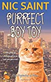 Purrfect Boy Toy (The Mysteries of Max)