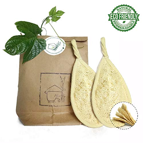 Loofah Face Scrubber | Pack 2 Natural Vegetable Facial Sponges | Reusable Luffa Face Exfoliator| Lufa Cellulose Exfoliating Scrub Cleansing Makeup Remover Pads | Zero Waste Product