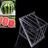 WCIC 2-Pack Square Watermelon Growing Mold Sapodilla Garden Fruit Mould Tool with 15 Screws
