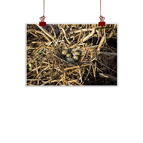 (duommhome Simulation Oil Painting Bird s nest in its Natural Habitat for Living Room Bedroom Hallway Office 20