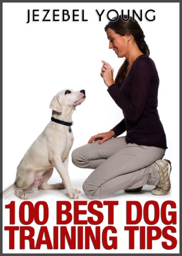 Training Dog Tips (100 Dog Training Tips)