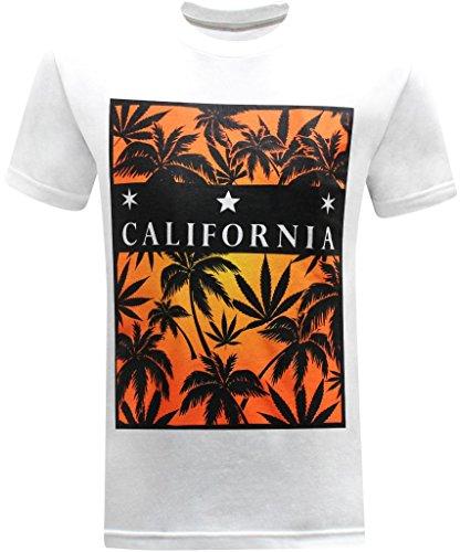 california-republic-sunset-mens-t-shirt-medium-white