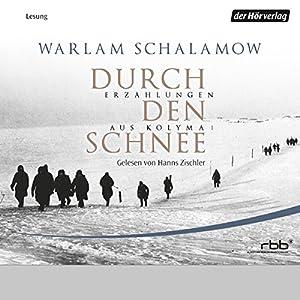 Durch den Schnee (Erzählungen aus Kolyma 1) Hörbuch