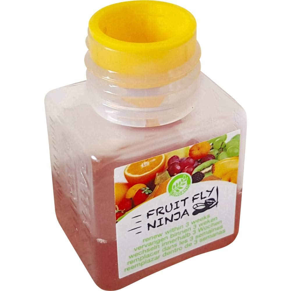 Fruit Fly Ninja Fliegenfalle Fruit-Fly-Trap 42219 (B x H x T ...