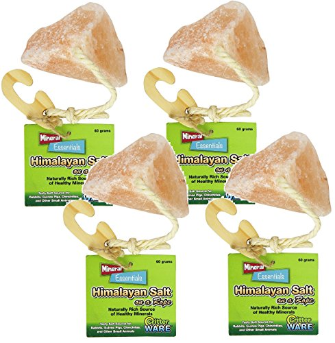 (4 Pack) Ware Manufacturing Himalayan Salt on a Rope Small Pet Chew Treats by Ware Manufacturing