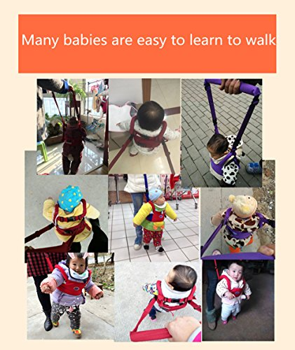 TRMB Handheld Baby Walker, Toddler Safety Harness to Prevent Baby Falling, Safe and Non-Toxic, Breathable and Comfortable, Pulling and Lifting Dual Use by GGTRMB (Image #8)