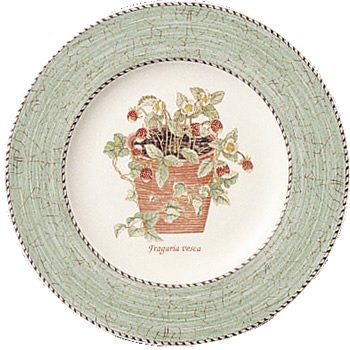 Wedgwood Sarah's Garden Fine Earthenware 8-Inch Salad Plates, Set of 4, Green by Wedgwood