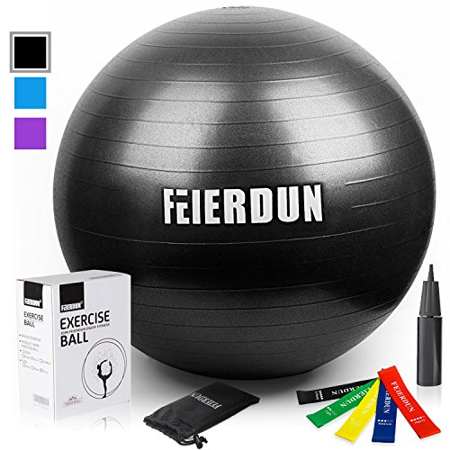Exercise Ball - Anti Burst Tested Yoga Ball Supports 240lbs,Swiss Ball Includes Exercise Resistance Loop Bands & Hand Pump for Home, Balance, Stability, Gym, Core Strength, Yoga, Fitness, Pilates (Chair Excersize Desk)