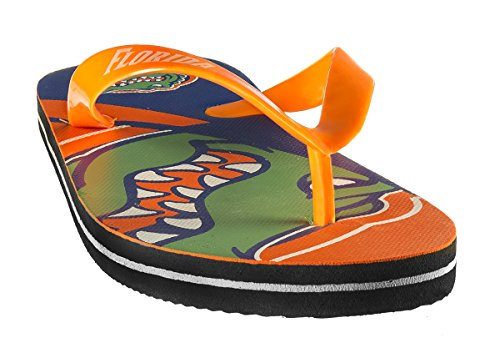 Forever Collectibles NCAA Team Logo Flip Flop University of Florida Medium (Flops Flip Florida)