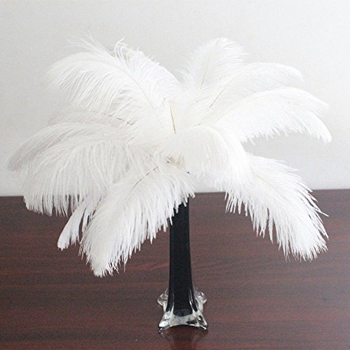Ostrich Feather Craft 8-10inch (20-25cm) Plume for Wedding Centerpieces Home Decoration (20) ()