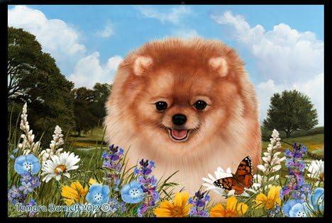 Best of Breed Pomeranian Orange Summer Flowers Floor Mat
